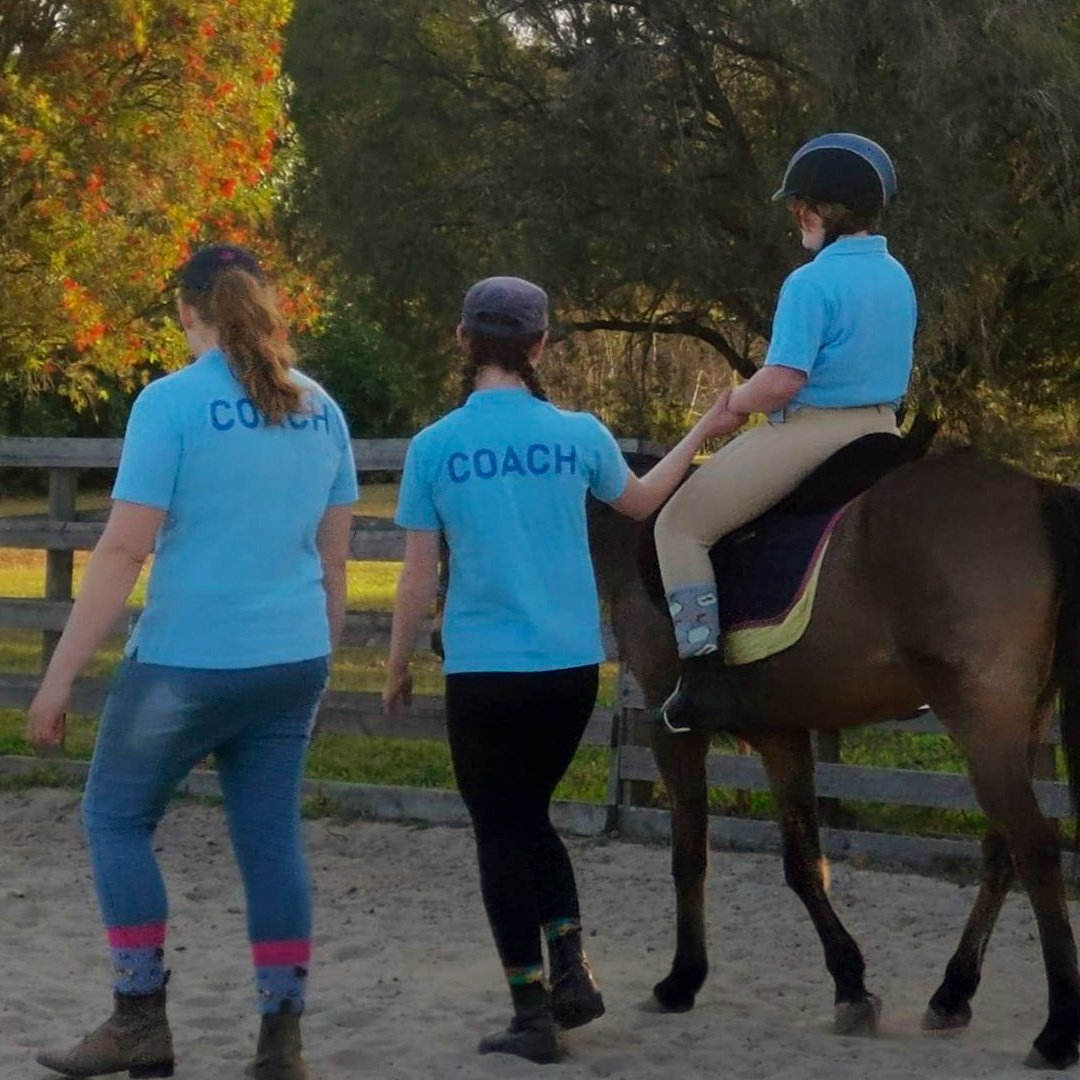 Equine Assisted Therapy for Autism Spectrum Disorder