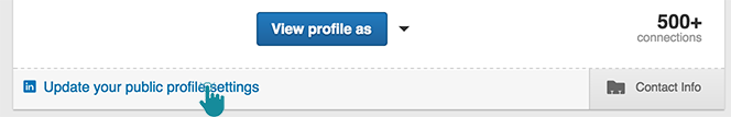 LinkedIn SEO Update your public profile settings